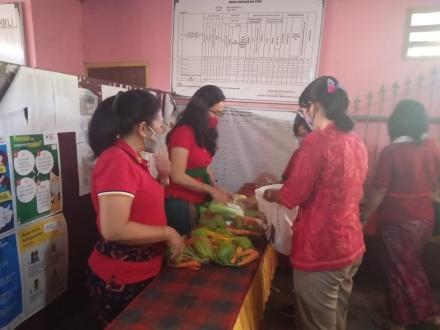 Sosialisasi Eco Enzym Di Desa Menyali